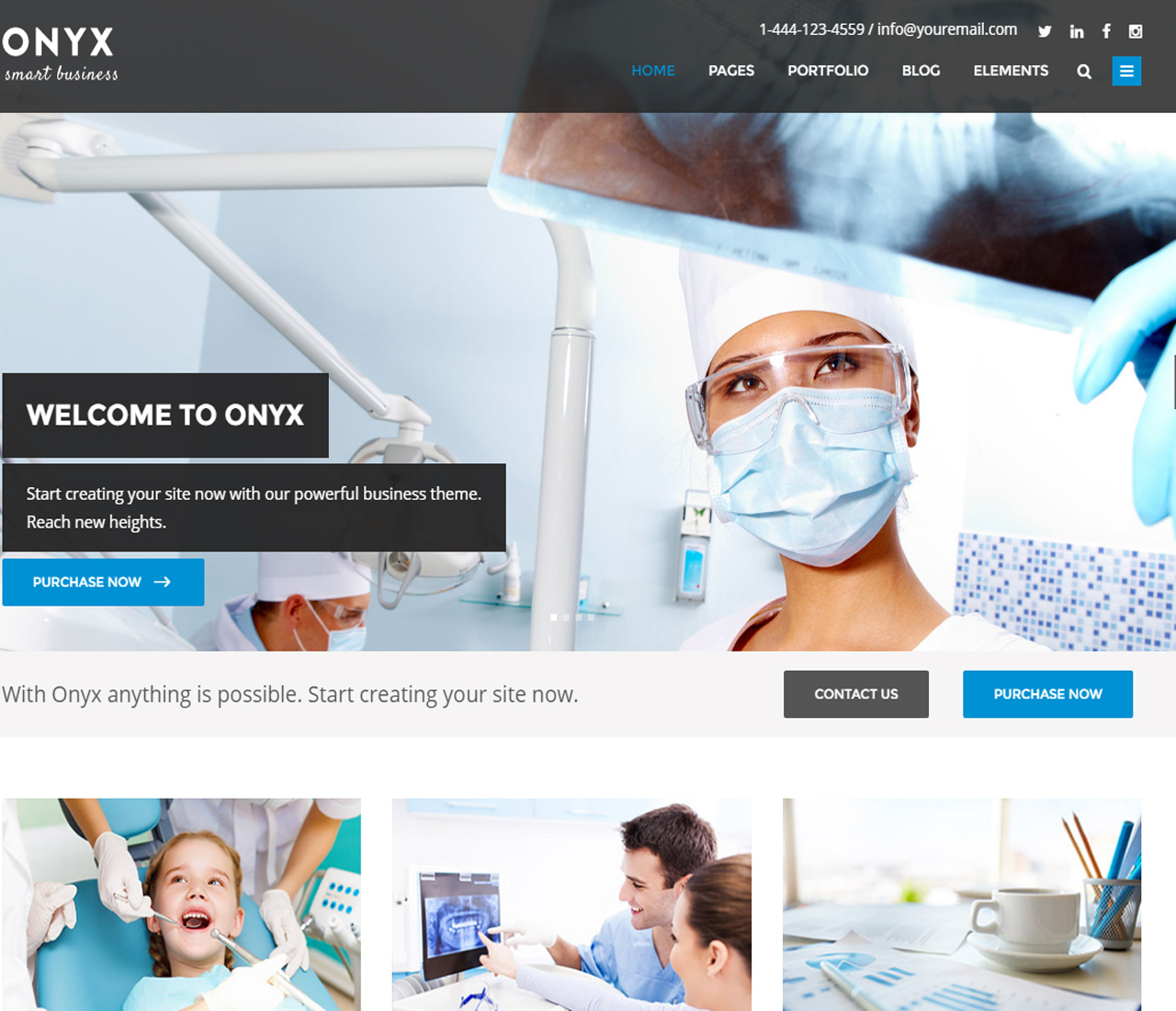 Onyx — A Powerful Multi-Concept Business Theme — 11313269-1